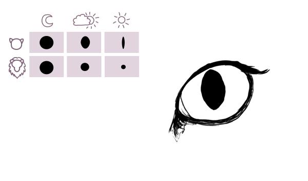 catdrawing_5-3_eyes_big_cat_pupils_light_change