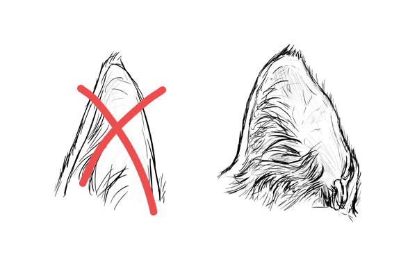 Catdrawing 7 1 ear mistake