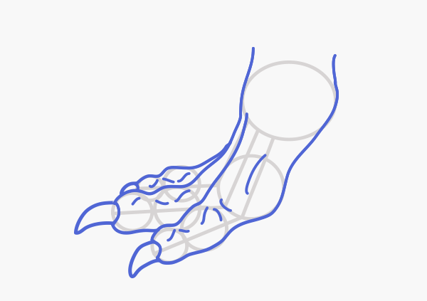 Pointed Feet Drawing Dragonbody_3-7_claws
