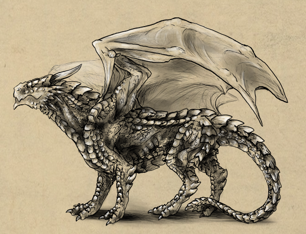 Rawr! How to Draw an Anatomically Correct Dragon Drawings Of Dragons Realistic