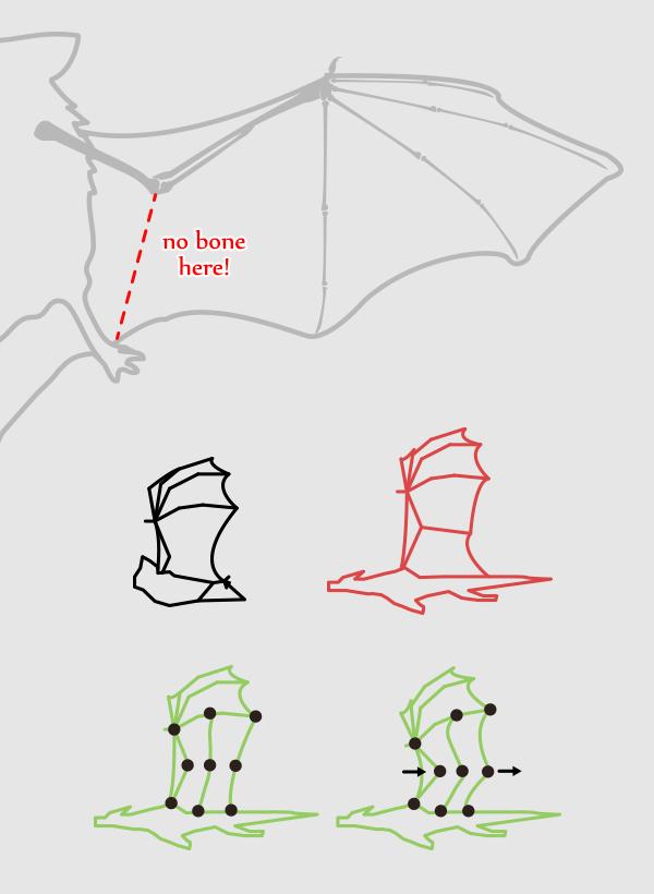 wings_3-4_batwing_bat_mistake