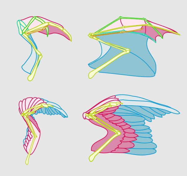 wings_5-5_folding