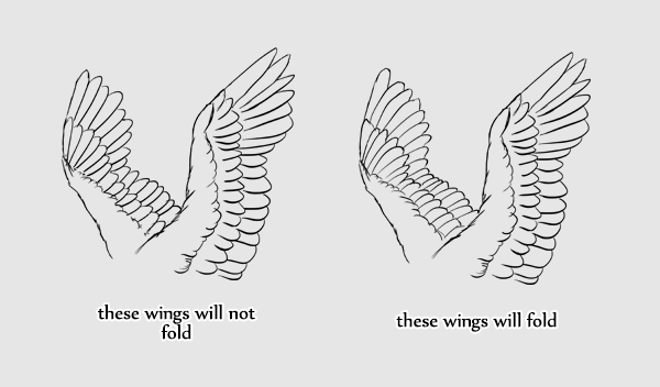 Wings 6 3 feathers direction