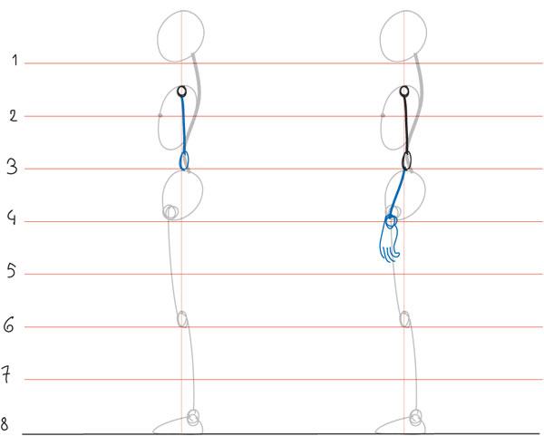 İnsan Anatomisi Model çizim Teknikleri ve Ölçü nasıl alınır