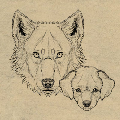 Drawingdogs 400x400