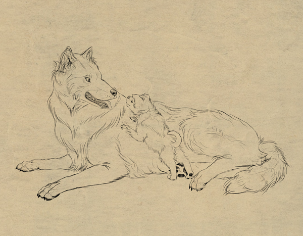 drawingdogs_9-1_fur2