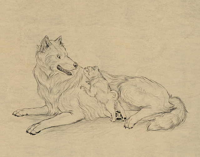 Link toHow to draw animals: dogs and wolves, and their anatomy
