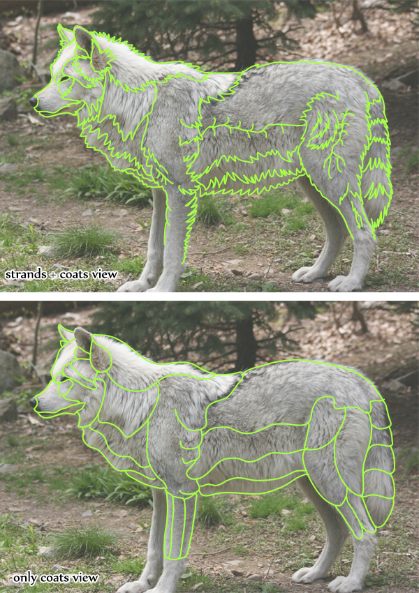 How to Draw Animals: Quickly Render Fur