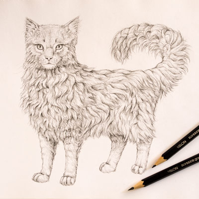 how to draw animals quickly render fur
