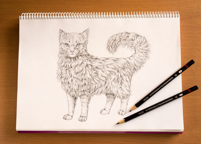 Link toHow to draw animals: quickly render fur