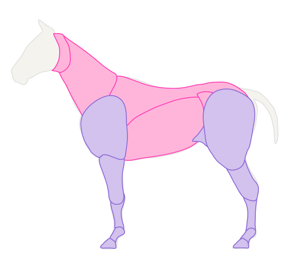 Horse Body Drawing Drawinghorse_3