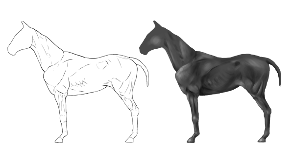How to Draw Animals: Horses, Their Anatomy and Poses