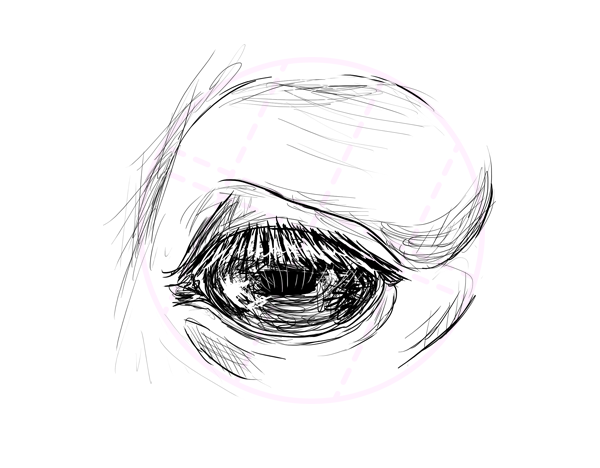 drawinghorse_6-6_eyes
