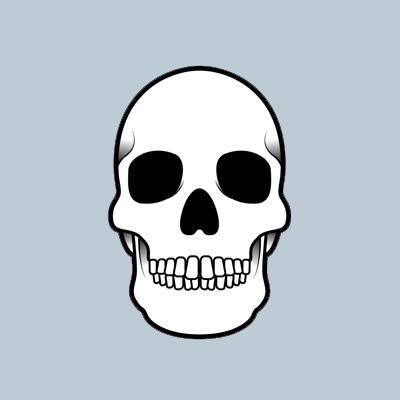 Skull400