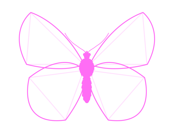 drawingbutterfly_3-2_wing_drawing