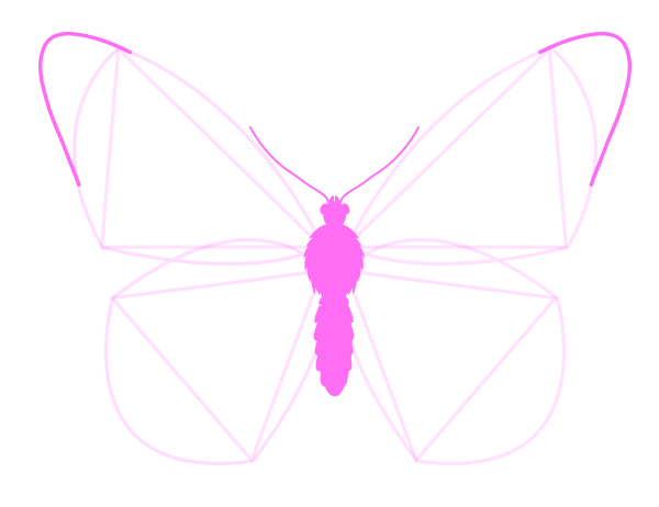 drawingbutterfly_3-3_wing_drawing