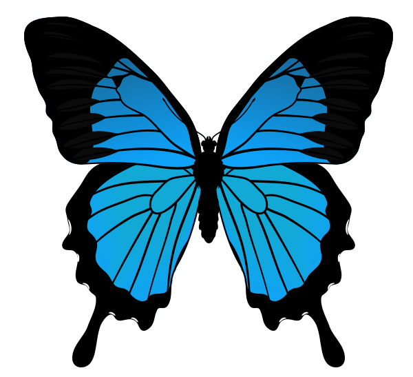 drawingbutterfly_5-5_mountain_blue