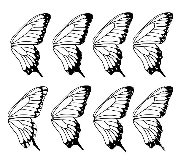 drawingbutterfly_8-4_design_spots