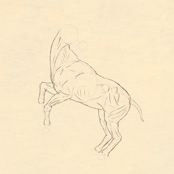 drawinghorse_3-6_skin_done
