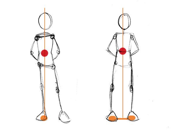 İnsan Anatomisi Temelleri: Denge ve Hareket
