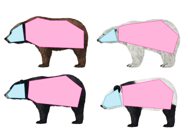 howtodrawbears-2-5-bear-silhouette-comparison
