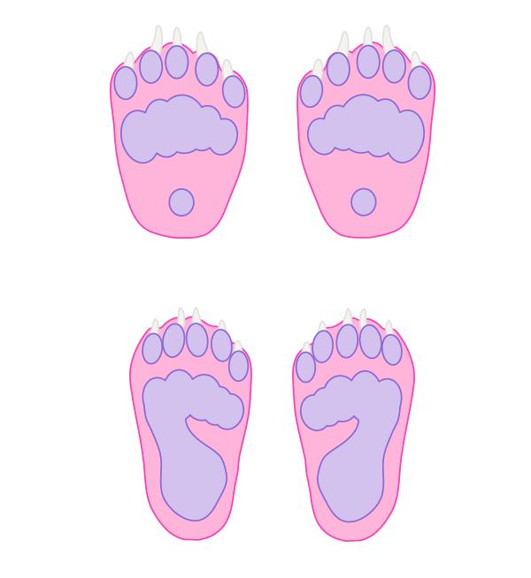 howtodrawbears-5-1-bear-foot-anatomy