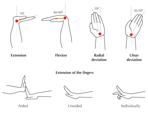 how to read elbow extension arom