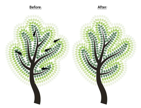 diana_A&Sbrushes_trees_tut_23