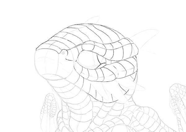 drawingbabydragon-3-8-scales-head2