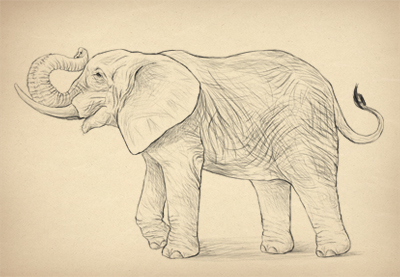 Howtodrawelephants prevhub