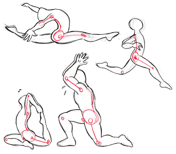 Human anatomy fundamentals: flexibility and joint limitations