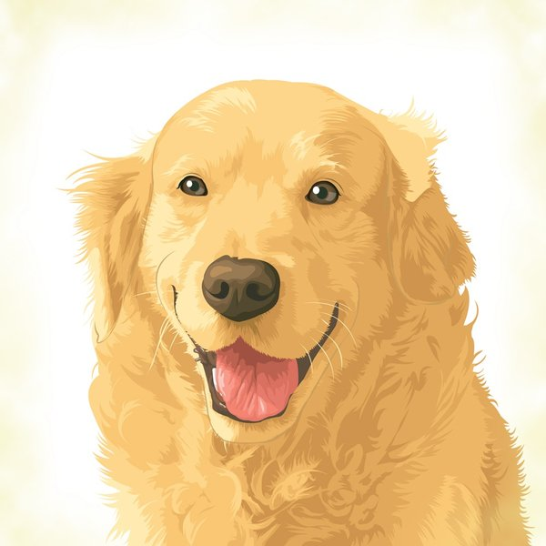 Golden_retriever_by_tsugami