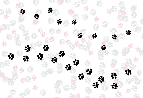 Link toQuick tip: how to create a simple paw print scatter brush in adobe illustrator