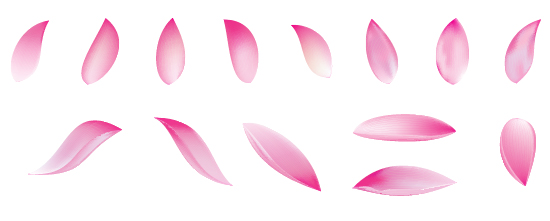 Create A Lotus Flower With Adobe Illustrator Cs5