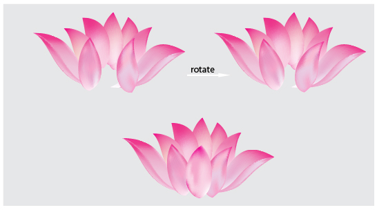 lotus flower petal template create a lotus flower with adobe