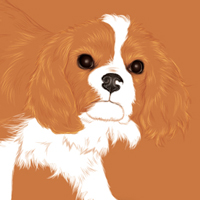Preview for Create an Adorable Puppy with Negative Space and the Paintbrush Tool