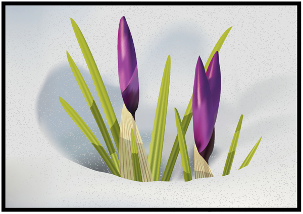 Link toHow to illustrate crocus flowers in the snow