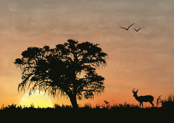 Link toCreate an african silhouette sunset using image trace in illustrator cs6