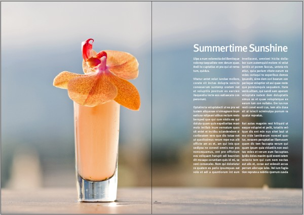 Link toHow to create a professional magazine layout