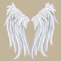 Preview for Create a Feather Brush and Set of Detailed Wings in Illustrator