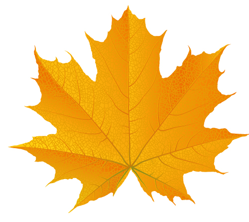 how to draw a fall leaf using adobe illustrator rh design tutsplus com fall leaves vector background fall leaves vector border