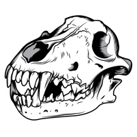 Preview for How to Create a Three Color Wolf Skull in Illustrator