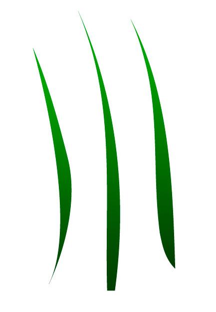 blade of grass vector -#main