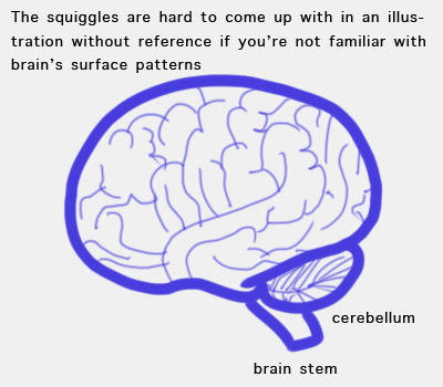 How to illustrate a brain icon for osx and vista section 1 illustration ccuart Image collections