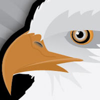 Preview for How to Create an Eagle Head Sticker