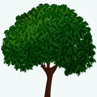 Preview for Create a Vector Tree with Custom Brushes and the Gradient Mesh Tool
