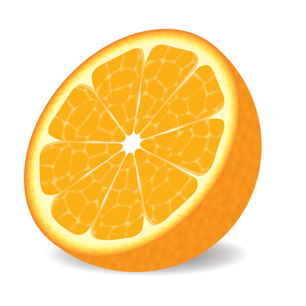 Image Gallery orange slice vector