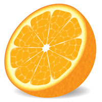 Preview for How to Make a Delicious Vector Orange in 9 Decisive Steps