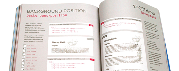 What's the best way to learn HTML, CSS, Photoshop and ...