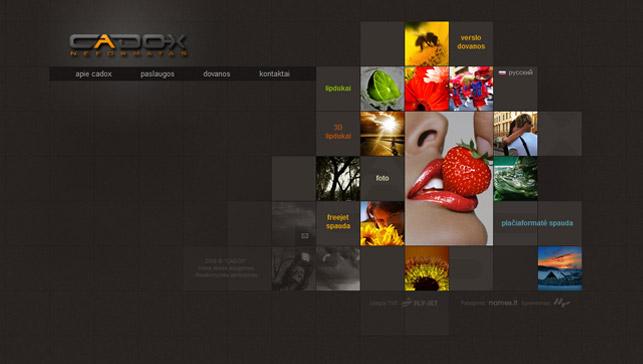 Visual direction in web design for Home design ideas website
